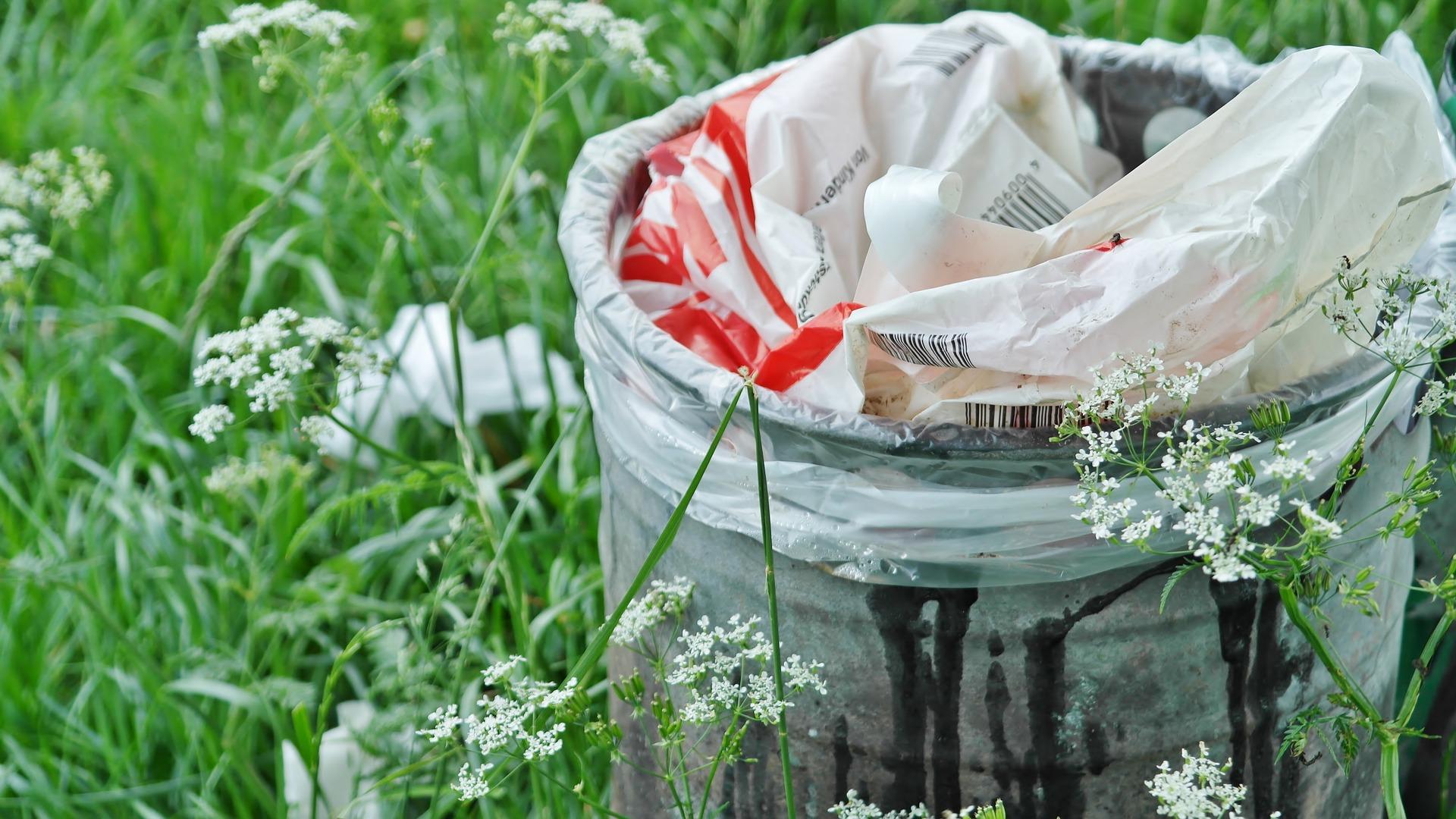 Raccolta dei rifiuti, plastic free e verde pubblico